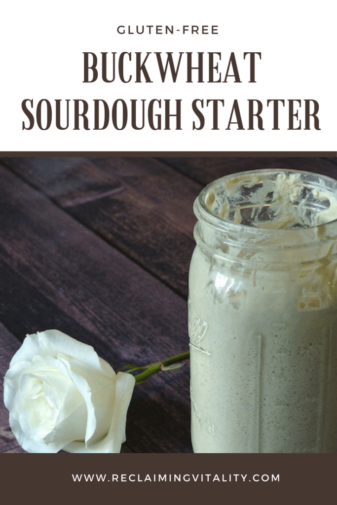 Buckwheat Sourdough Starter
