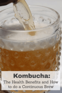 Kombucha: The Health Benefits and How to do a Continuous Brew