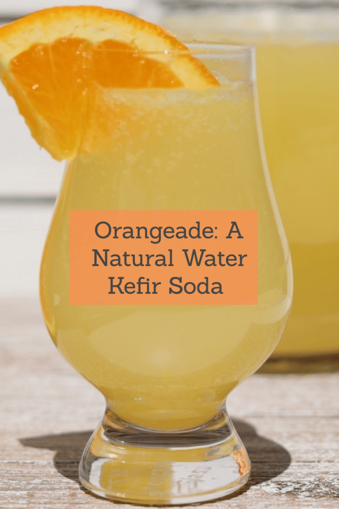 Orangeade: Natural Water Kefir
