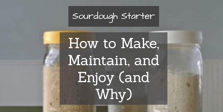 Sourdough Starter: Obtaining, Maintaining, and Enjoying