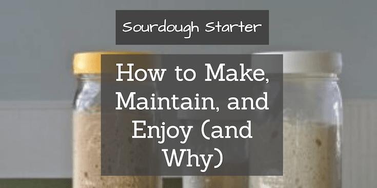Sourdough Starter: Obtaining, Maintaining, and Enjoying