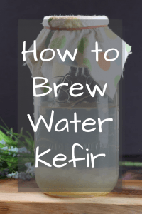 How to brew water kefir