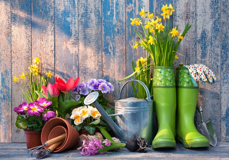 Gardening: The Health Benefits