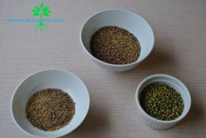 Sprout mixes dry