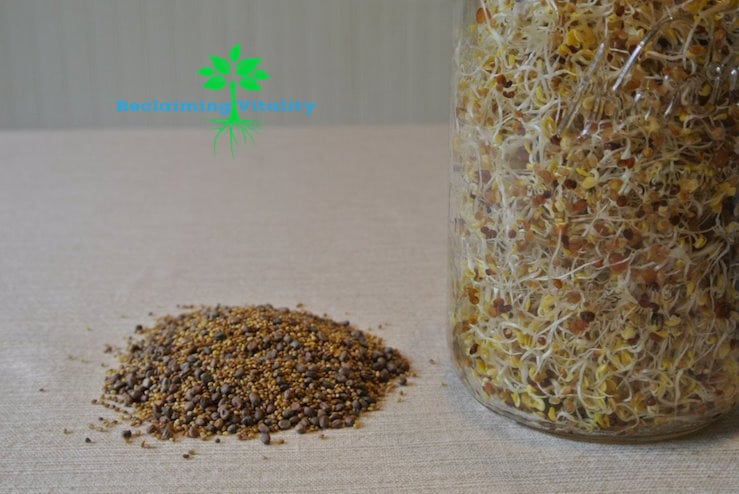 Sprouts Dry and Sprouted