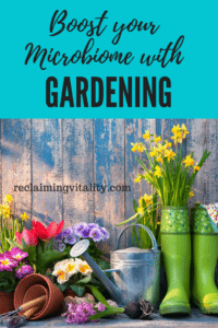 The many health benefits of gardening