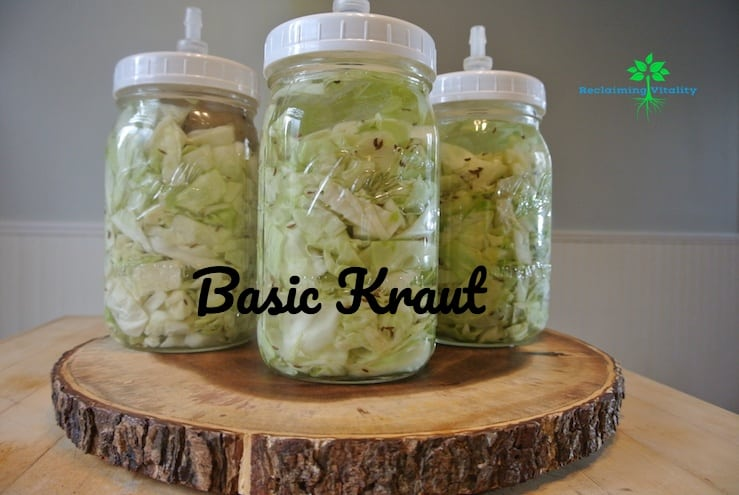 Three Easy Ways to Add Fermented Foods to Your Daily Diet