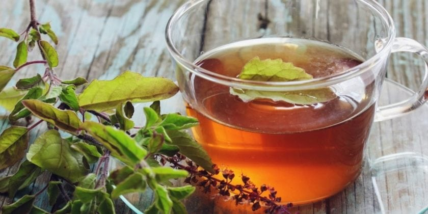 Lower Stress Hormones and Boost Energy with Holy Basil (aka Tulsi)