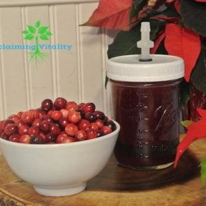 How to Make Fermented Cranberry Sauce #fermentedfoods #guthealth #microbiome #traditionalfoods #fermentedcranberrysauce #reclaimingvitality