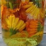 DIY Flower Oils for Healing Salves and Creams