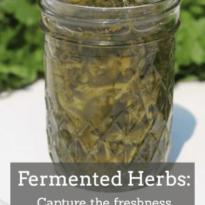 Fermented Herbs